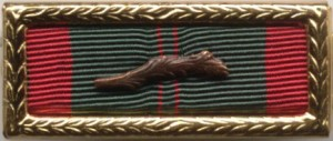 RVN Civil Actions Honor Medal, First Class